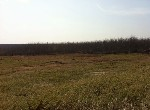 農地-西嶼大池角方正美地-澎湖縣西嶼鄉大池角段路