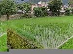 農舍-清澈水源電梯農舍-宜蘭縣冬山鄉丸山二路