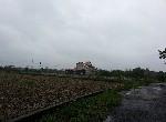 農地-新屋?榔農地-桃園市新屋區?榔段路