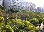 電梯住宅-仁愛林蔭名宅-臺北市大安區仁愛路4段