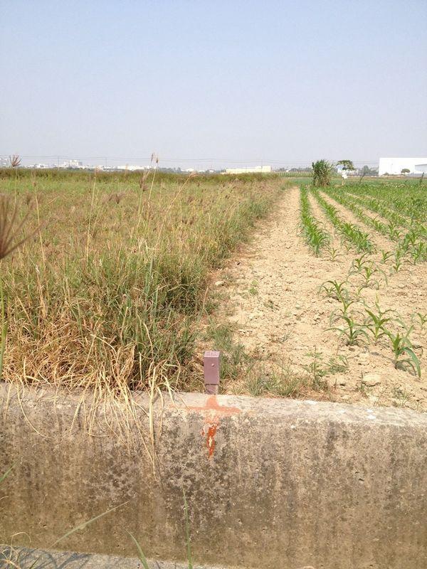 農地-佳里區廣安段潛力農地-臺南市佳里區廣安段路