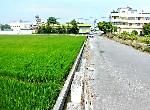 農地-秀水水尾巷田-彰化縣秀水鄉