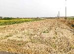 農地-鹽水區下林段大面寬農地2-臺南市鹽水區下林段