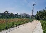 農地-聖亭路美農地A-桃園市龍潭區八張犁段