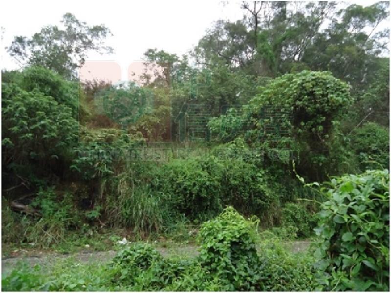 買屋賣屋租屋中信房屋-竹和路林地