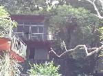 其他用地-陽明山休閒土地-臺北市士林區仰德大路4段