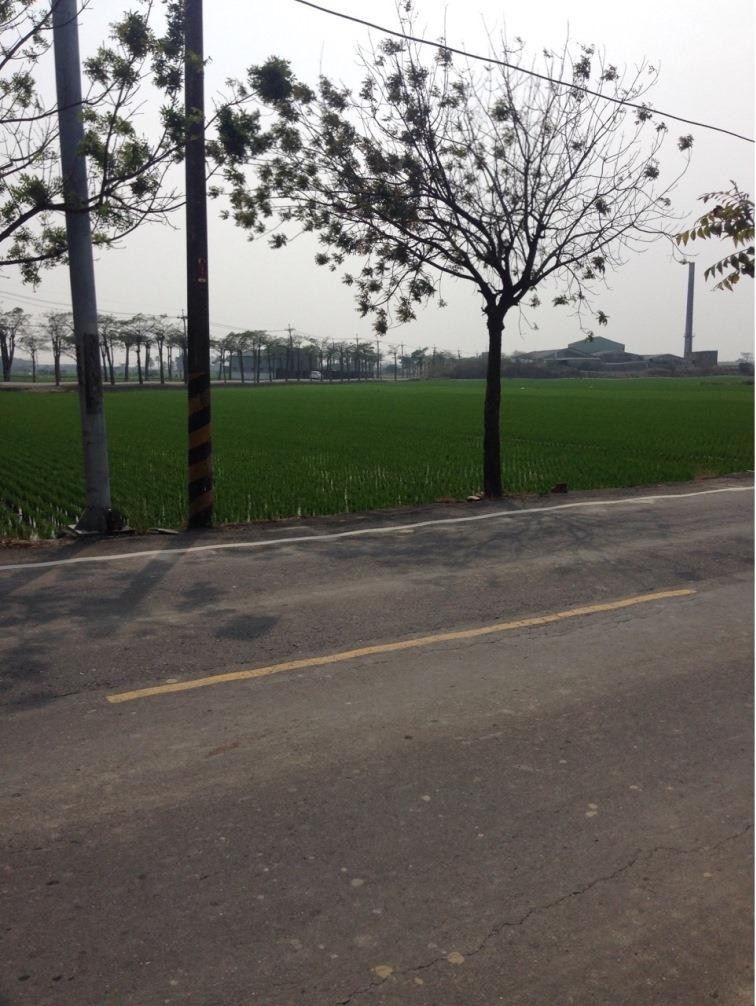 農地-下營賀建里農地-臺南市下營區