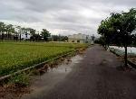 農地-六甲龜仔港農地1-臺南市六甲區龜仔港段