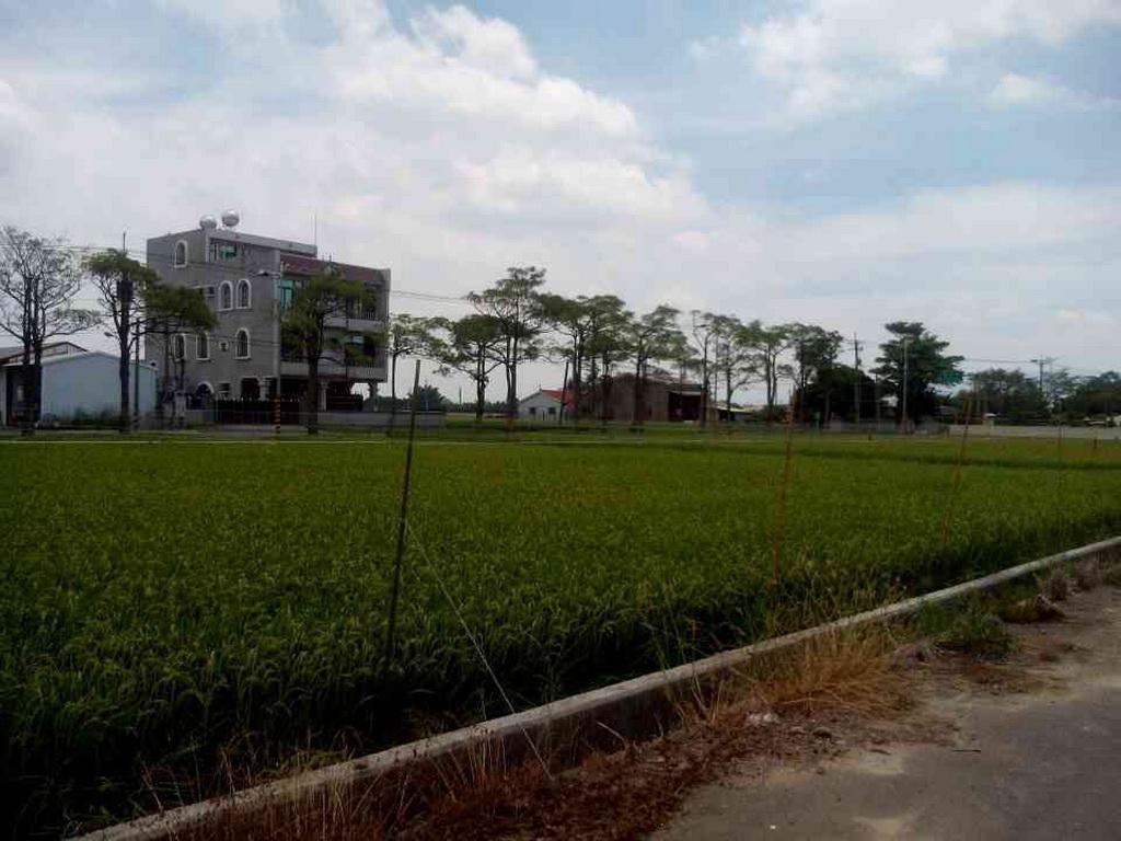 農地-六甲龜仔港農地2-臺南市六甲區龜仔港段路