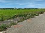 農地- 西港八分段農地1-臺南市西港區八分段