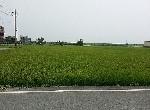 其他-823近交流道景觀農舍-宜蘭縣五結鄉