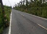 農地-內埔國中農地-屏東縣萬巒鄉
