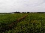 農地-佳里小而美農地-臺南市佳里區蚶寮村