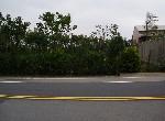 農地-觀音文化路農地-桃園市觀音區坑尾段路