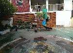 透天-EZ20八德幼稚園透天-桃園市八德區永忠街