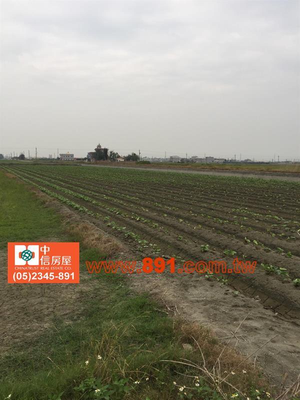 農地-水林1.8分農地-雲林縣水林鄉後寮路