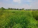 買屋賣屋租屋中信房屋-路竹無汙染有機農地
