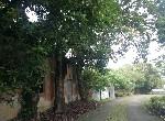 農地-小南海景觀農地-臺南市後壁區