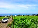 農地-八邊海景農地-臺東縣成功鎮