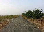 農地-六甲水漆林段農地-臺南市六甲區中山路