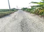 農地-施厝寮農地-臺南市後壁區