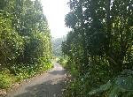 農地-六龜新寮美麗山景農地-高雄市六龜區新威段
