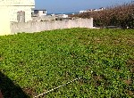 農地-白沙可依法申請建築土地-澎湖縣白沙鄉赤崁中段