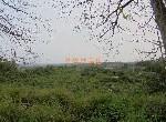 農地-大內5.7甲平坦農地-臺南市大內區