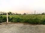 買屋賣屋租屋中信房屋-佳里國中旁路面農地