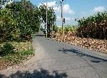 農地-阿蓮中路農地1-高雄市阿蓮區中路段
