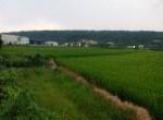 農地-寶山國小農地1-彰化縣芬園鄉圳墘段