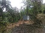 其他用地-南化1.1甲山坡保育地-臺南市南化區