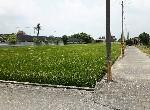 農地-下營優質農地-臺南市下營區