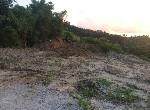 農地-龍崎農保便宜農地-臺南市龍崎區崎頂段