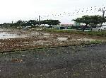 農地-下營麻豆寮段農地-臺南市下營區