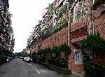 買屋賣屋租屋中信房屋-b-57龍田大地