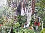 農舍-南庄景觀咖啡農舍-苗栗縣南庄鄉獅山村9鄰獅山路