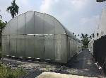 農地-鹿寮有機認證溫室-屏東縣萬巒鄉頭溝水段