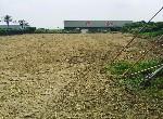 農地-國8號道臨路美農地-臺南市安定區港口段
