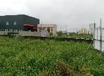 農地-和美實驗學校田地-彰化縣鹿港鎮