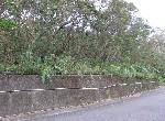 農地-深坑土地-新北市深坑區阿柔坑段王軍寮小段