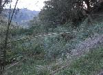 農地-排寮土地-新北市石碇區排寮段十八重溪小段