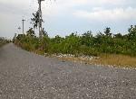 農地-壽豐大坪段二面路配蓋農地-花蓮縣壽豐鄉大坪段