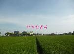 農地-下營區麻豆寮段三角窗農地-臺南市下營區
