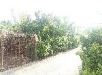 建地-G001-後壁菁寮美建地-臺南市後壁區