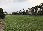 其他用地-鹽埔國小都內農地-屏東縣鹽埔鄉鹽南段