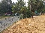 農地-義大農牧用地-高雄市大樹區