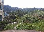 農地-天籟溫泉農地-新北市金山區頂中股段硫磺子坪小段段