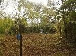 農地-左鎮岡子林農地-臺南市左鎮區岡子林段
