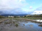 其他-宜蘭市田園美景農舍-宜蘭縣宜蘭市梅洲段